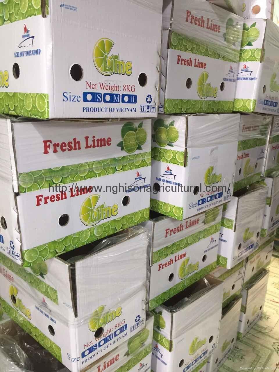 Fresh Seedless Lime/ Lemon 2