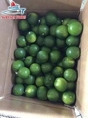 Fresh Seedless Lime/ Lemon