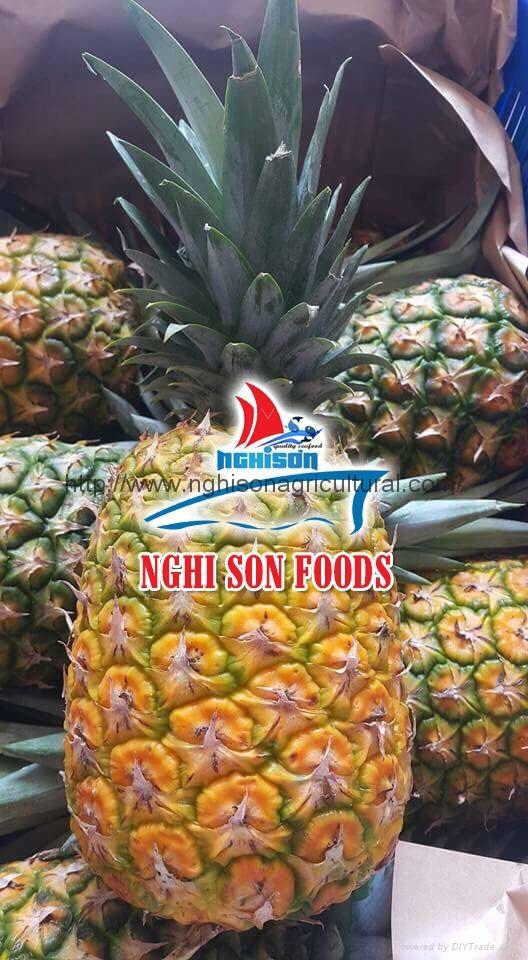 Fresh Pineapple 1