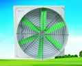 fiber glass fan 2