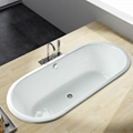 Double Ended Drop In Bathtub