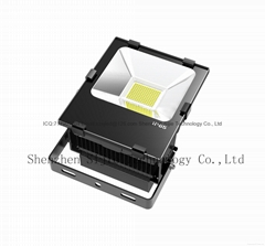 Meanwell driver LED lamp External Power Supply floodlight