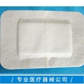 Sterile adhesive wound paste