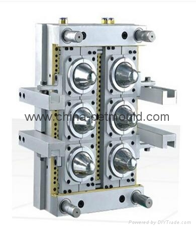 pharmaceutical pet preform mould 3