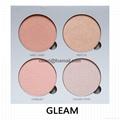 Makeup Palettes,4 palette colors 8