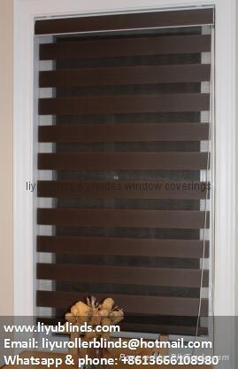 zebra window blinds shades 1