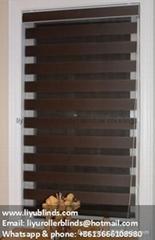 zebra window blinds shades