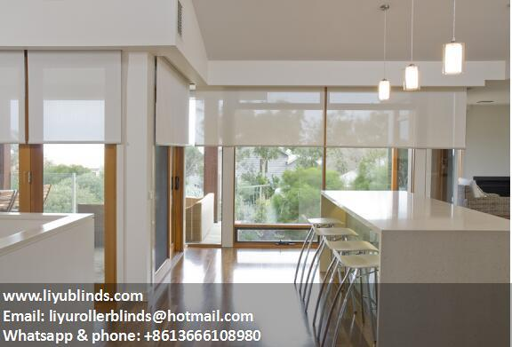 commercial roller blind window coverings 1