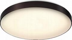 六律光音智能LED吸頂圓燈
