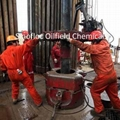 Oilfield Chemicals