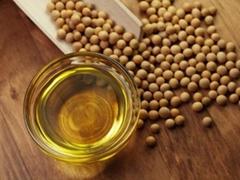 Refind Soybean oil