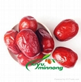 Chinese red dates