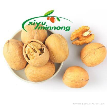 Thin-shell walnut 1