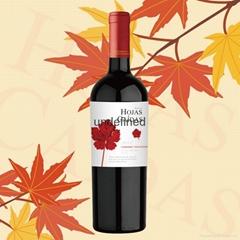 智利卡伊蒂斯珍藏赤霞珠干红葡萄酒