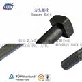 Square Head Bolt Supplier in Suzhou