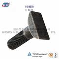 T Type Bolt Supplier in Suzhou