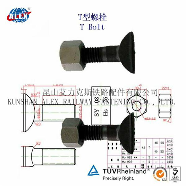 T Type Bolt Supplier in Suzhou 4
