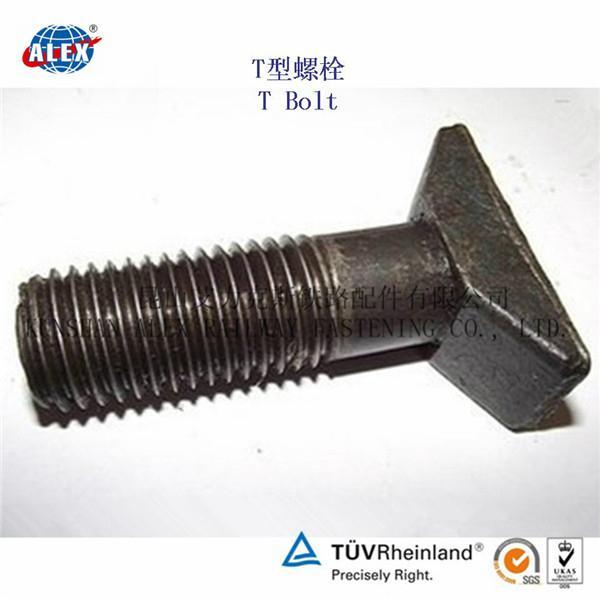 T Type Bolt Supplier in Suzhou 3