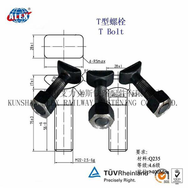 T Type Bolt Supplier in Suzhou 2