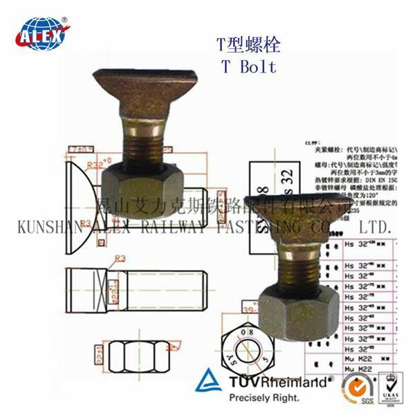 T Type Bolt Supplier in Suzhou 5