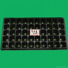 50孔加厚蔬菜营养钵花卉育苗盘
