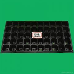 平底50孔加厚蔬菜营养钵花卉育苗盘