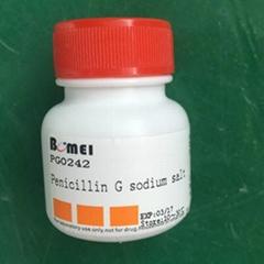 Ampicillin sodium 25 g import research laboratory reagent CAS: 69-52-3