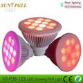 PAR38 12*3w  LED growing light bulb with