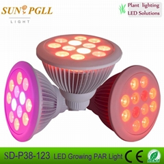 PAR38 12*3w  LED growing light bulb with CE ROHS approved
