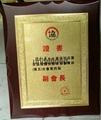金箔獎牌 2