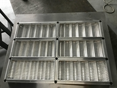 Thermoformed Mold for Food Trays Containers