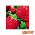 浓缩草莓汁