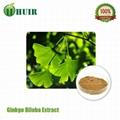 Ginkgo Biloba Leaf Extract 24percent