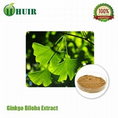 Ginkgo Biloba Leaf Extract 24percent Flavone 6percent Lactone USP