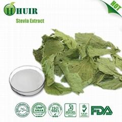 Stevia Leaf Powder Extract 90%