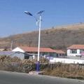 供應烈日之光6米太陽能路燈 3
