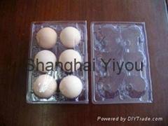 Bespoke Plastic Egg Tray from Shanghai YiYou