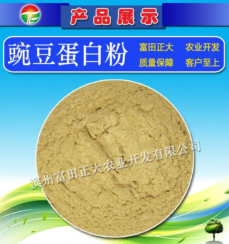 豌豆蛋白粉 1