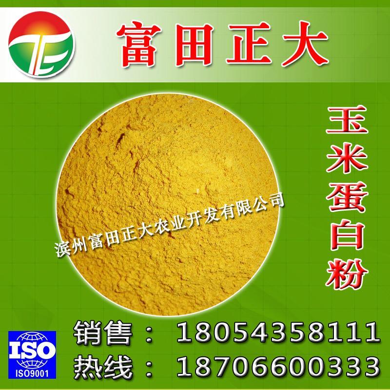 出口级粉状玉米蛋白粉 1