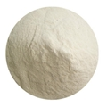 wheat protein powder feed grade