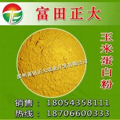 供應玉米蛋白粉