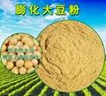 Expanded soybean flour 3