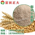 膨化小麦粉