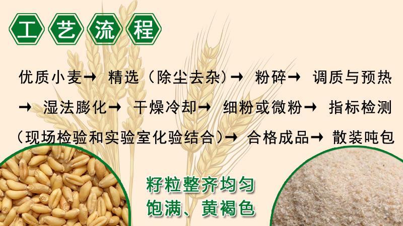 膨化小麦粉 9