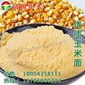 玉米面 4