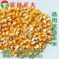 玉米面 5
