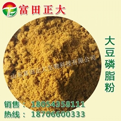 Soybean phospholipid powder