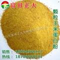 Granule Corn Gluten Meal