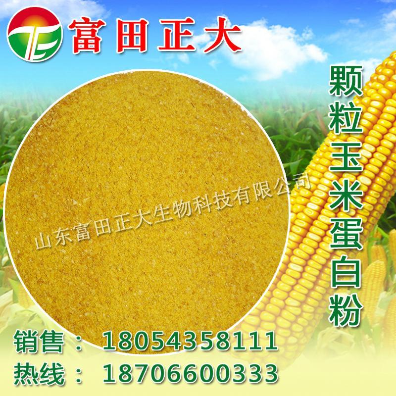 颗粒玉米蛋白粉 1