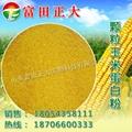 颗粒玉米蛋白粉
